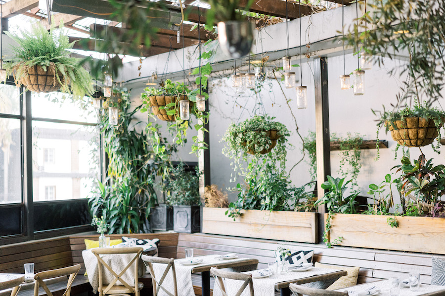dining area at madera kitchen la with hanging plants